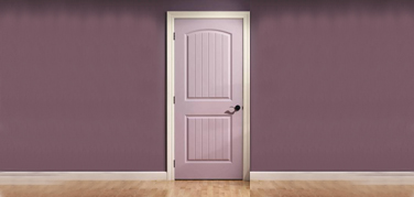 Moulded Skin Doors Manufacturers